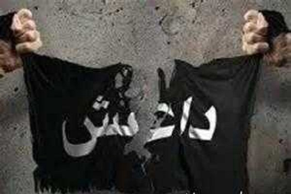 سرکرده داعش کشته شد