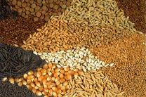 خرید ۳۰ هزار و ۴۳۵ تن محولات کشاورزی در گیلان