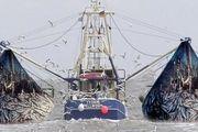 نصب سیستم ردیاب راهکاری برای کنترل شناورهای صیادی