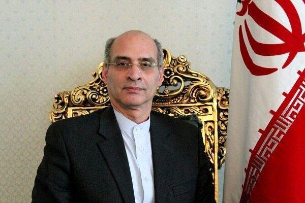 معاون شورای اجرایی سازمان منع سلاحهای شیمایی انتخاب شد