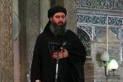 محل جدید اختفای ابوبکر البغدادی فاش شد
