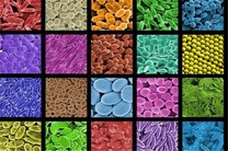 کارایی نانوذرات فتوکاتالیستی افزایش می یابد