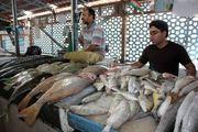گرانی قیمت ماهی در بندرعباس توجیه پذیر نیست