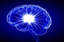 قند مصرفی بر مغز چه تاثیری دارد