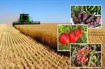 تولید سالانه یک میلیون تن محصولات کشاورزی در استان اردبیل