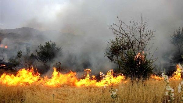 حریق 3 هکتار از مراتع روستای لایبید در شاهین شهر