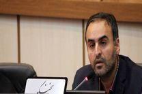 پیاده محوری محور جدی این دوره شورای شهر یزد است
