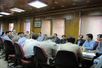 پرداخت 67 میلیارد ریال تسهیلات  در قالب طرح های اشتغال روستایی و فراگیر در رضوانشهر