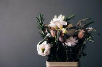 راهنمای انتخاب گل برای دکوراسیون داخلی خانه