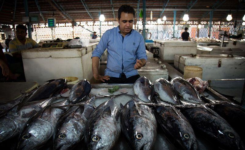 دغدغه ی مردم در خصوص قیمت ماهی مرتفع شود