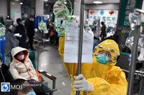 تعداد تلفات ویروس کرونا در دنیا به ۳۱۱۷ نفر رسید