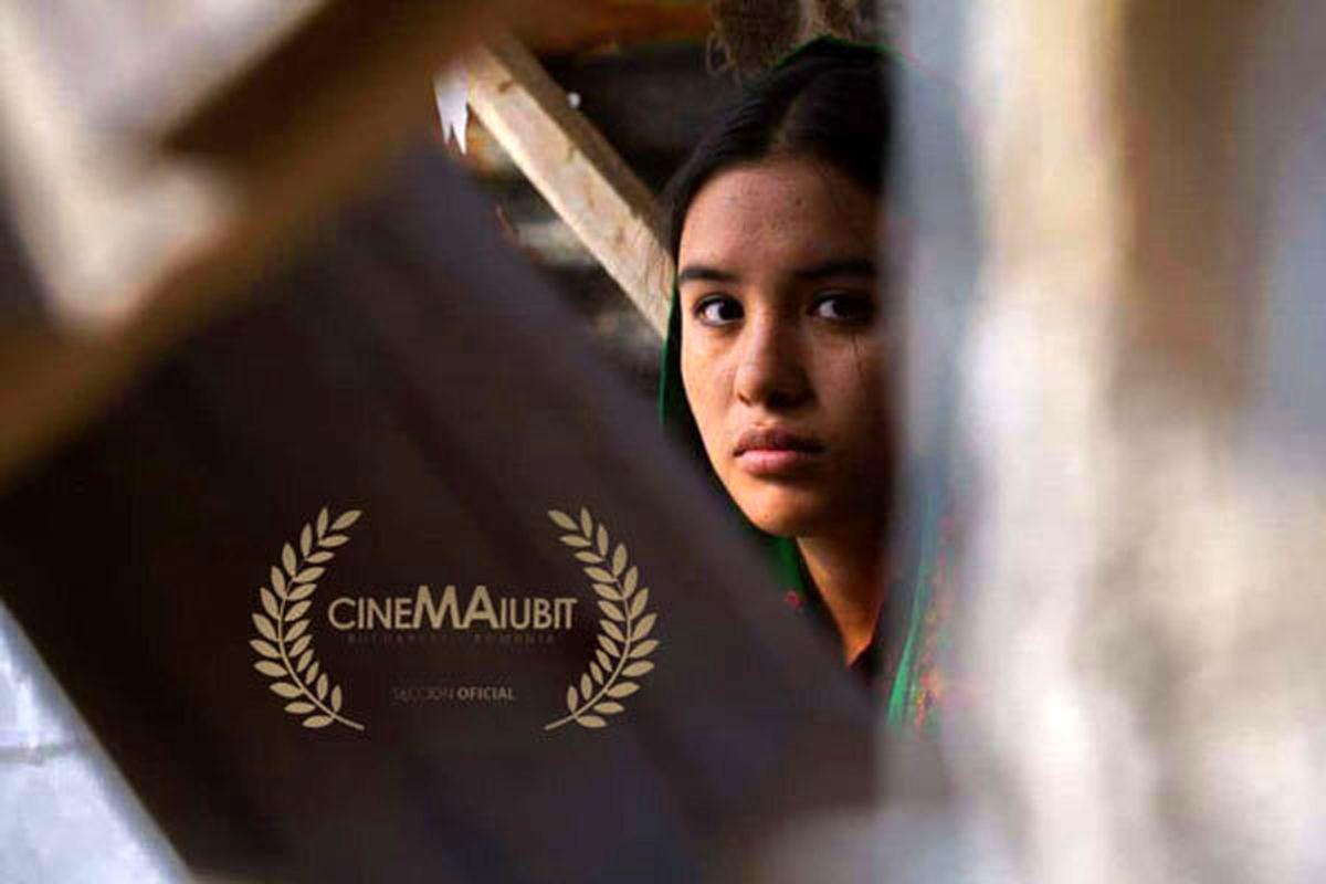 فیلم کوتاه «داغی» در بخش اصلی جشنواره رومانی به نمایش در می آید