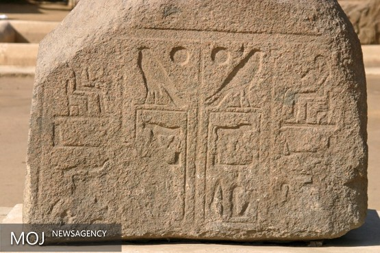 کتاب ترجمه شده از متون کتیبه های مصر باستان به انگلیسی چاپ شد