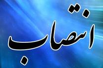 مدیرعامل سازمان مدیریت پسماند شهرداری تهران منصوب شد