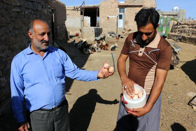 اجرای طرح ایجاد روستای بدون بیکار در خراسان رضوی