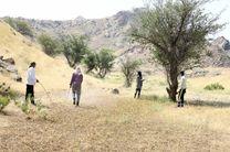 سمپاشی 65 هزار هکتار از اراضی کشاورزی هرمزگان