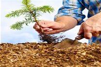 کاشت 5هزار اصله درخت در محوطه نمایشگاه شهر آفتاب