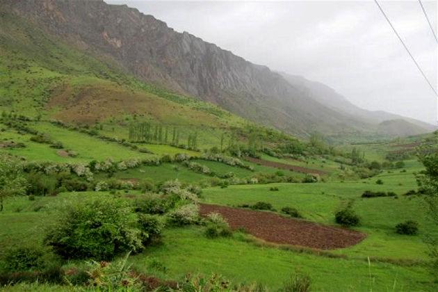 دو هزار و 500 هکتار از مراتع شهرستان دلفان قرق شد