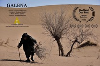 گالین فیلمی استعاری از تنهایی و اضطراب انسان ها/اولین زن بازنشسته ایرانی در شفیلد به روی پرده می رود