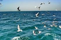 شرایط جهت ترددهای دریایی و صیادی مساعد است