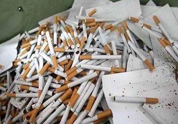 کشف 82 هزار و 20 نخ سیگار قاچاق در البرز