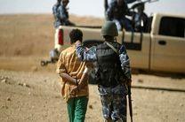 بازداشت چند تروریست داعشی در دو استان عراق
