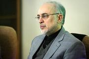 رئیس سازمان انرژی اتمی ایران به سردار سلیمانی تسلیت گفت
