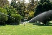 بیش از ۲۵۰ هزار متر مربع فضای سبز در پردیسان توسعه پیدا کرد