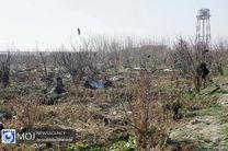 خسارات جان باختگان کرمان و سقوط هواپیما پرداخت میشود