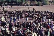 مهاجرت اجباری 216 میلیون نفر در پی تغییرات آب و هوایی