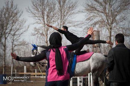ورزش ولتیژ  در ایران