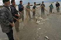 تمدید 10 روزه صید ماهیان استخوانی در سواحل دریای مازندران