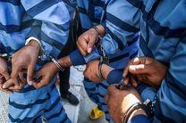 دستگیری 8 سارق در ملایر/  سارق تجهیزات آبیاری دستگیر شد