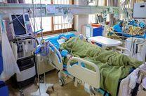 بستری شدن 13 بیمار جدید مبتلا به کرونا در کاشان