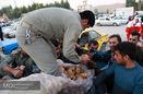 آماده سازی سبدهای غذایی ماهیانه برای زلزله زدگان