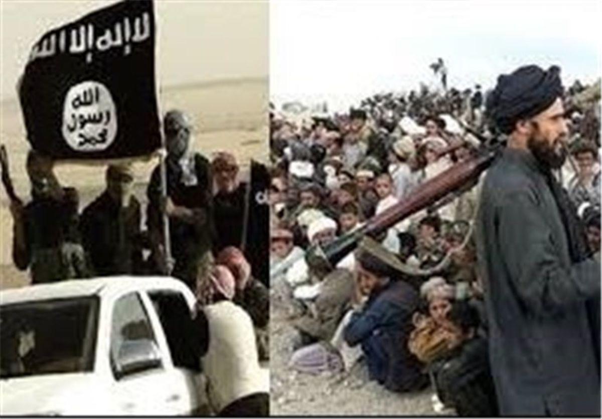 طالبان و پیوند مبارک با داعش
