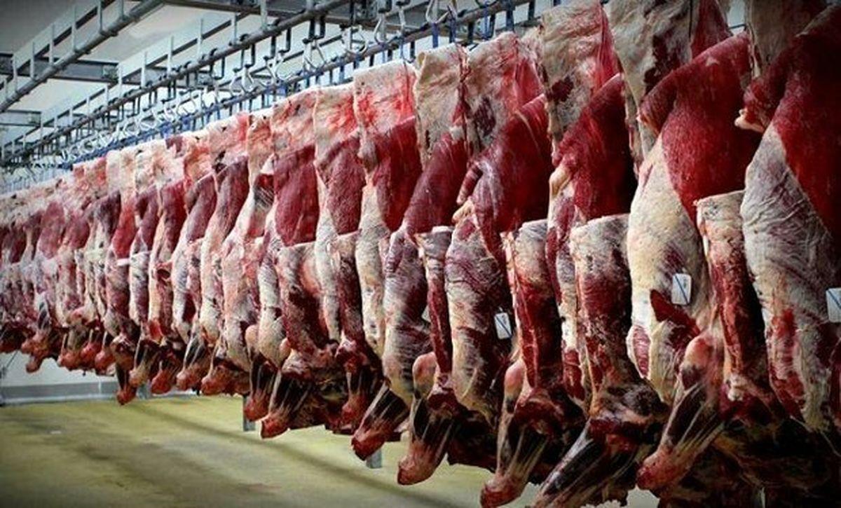 احتمال گرانی گوشت در فصل سرد / افزایش قاچاق دام و کاهش تولید گوشت در ایران