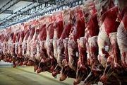 اضافه شدن دو کالای اساسی گوشت و حبوبات به سامانه رصد کالا