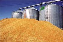 مصرف۲.۵میلیون تن گندم در 3 ماه امسال