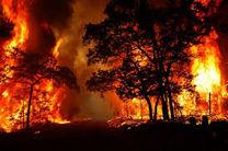  جنگل های بخش کجور نوشهر دچار آتش سوزی شد