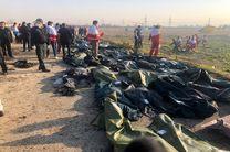 تصاویر و جزییات جدید از سقوط هواپیمای اوکراینی / بیشتر مسافران، ایرانی بودند
