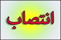 معرفی رئیس جدید اداره تبلیغات اسلامی شهرستان دلفان