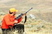 شکار پرندگان مهاجر وحشی تا اطلاع ثانوی ممنوع است