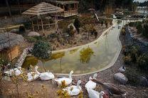 چهارمین باغ پرندگان کشور در  قم احداث می شود