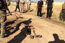 حمله داعش به مقر مستشاران آمریکایی در کرکوک