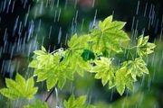 فریدونشهر پر بارش ترین شهرستان در استان اصفهان