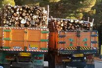 کشف حدود ۱۱ تن چوب جنگلی قاچاق در هرمزگان