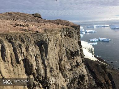 حیات در قاره قطب جنوب