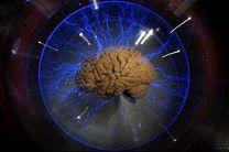 نخستین مسابقه ملی مغز و شناخت برگزار میشود