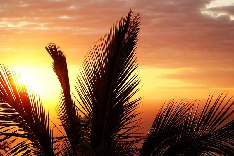 هوای شرجی تا پایان هفته جاری در خوزستان ادامه دارد